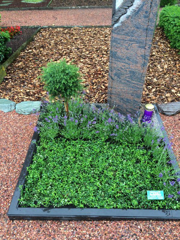 Garten Und Landschaftsbau Mönchengladbach grabgestaltung pflege gärtnerei schmitz mönchengladbach